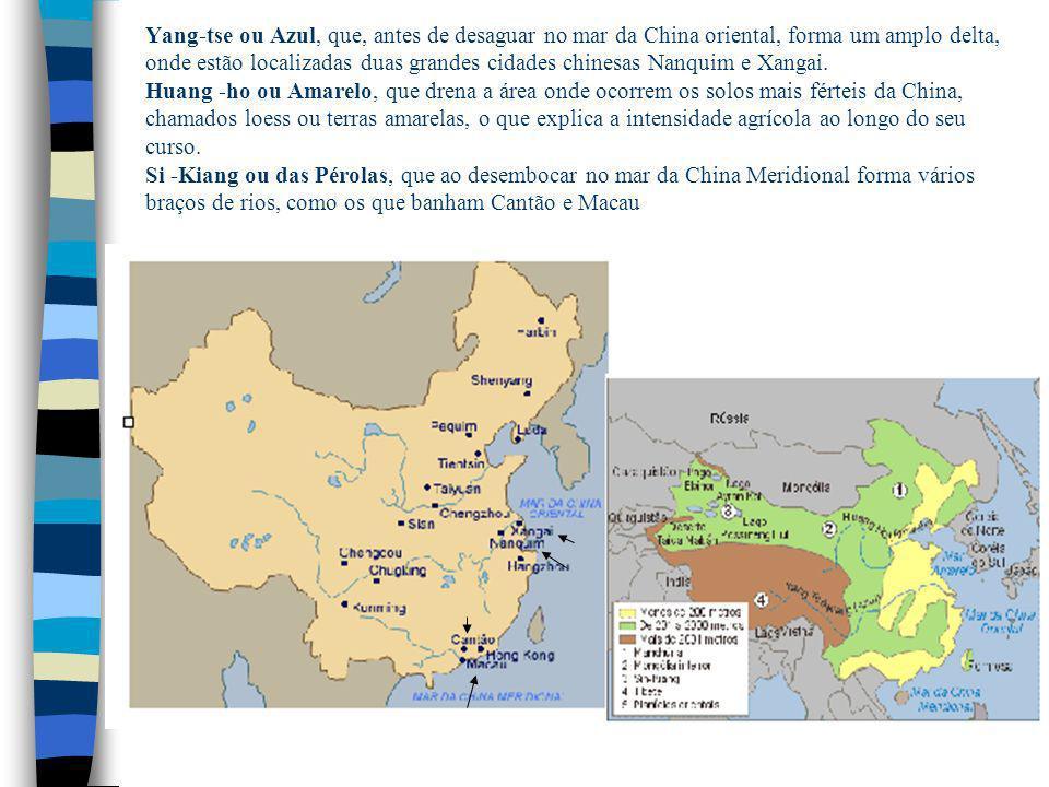Yang-tse ou Azul, que, antes de desaguar no mar da China oriental, forma um amplo delta, onde estão localizadas duas grandes cidades chinesas Nanquim e Xangai.
