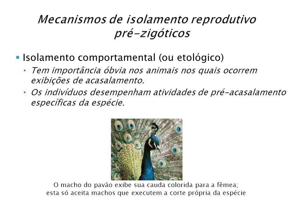 Mecanismos de isolamento reprodutivo pré-zigóticos