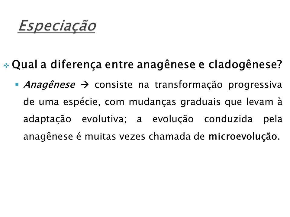 Especiação Qual a diferença entre anagênese e cladogênese