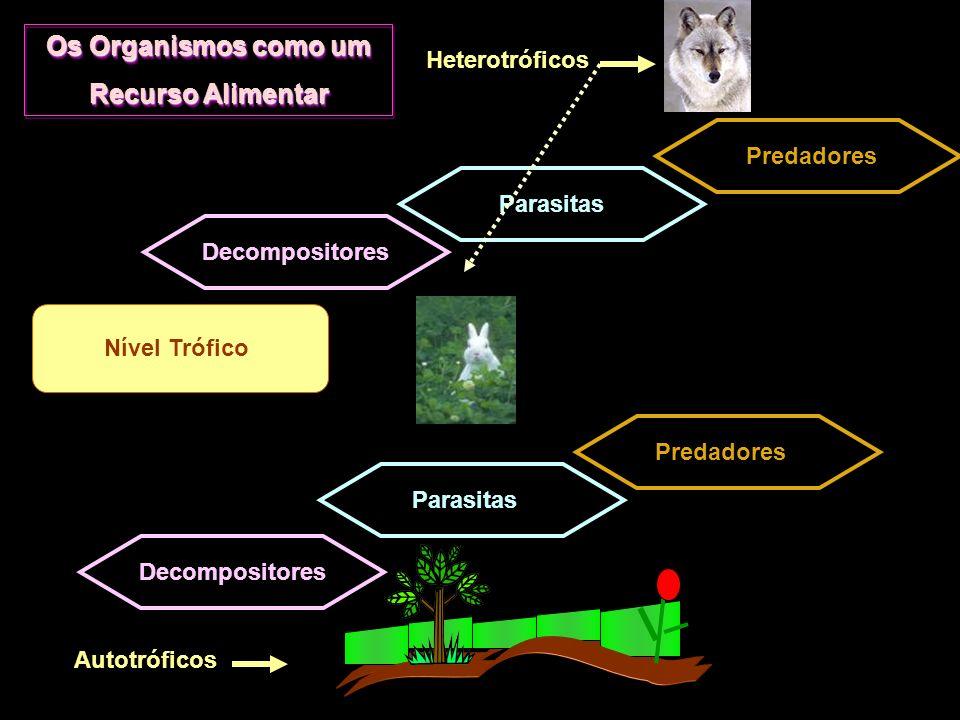 Os Organismos como um Recurso Alimentar