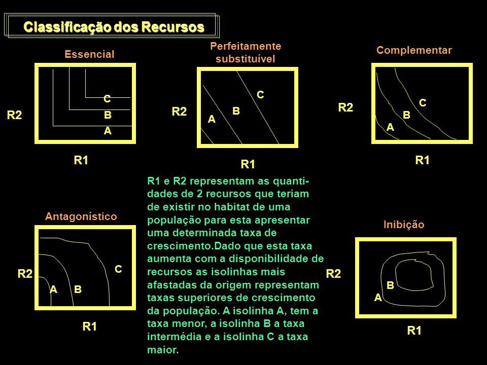Classificação dos Recursos Perfeitamente substituível