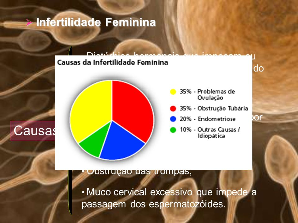 Causas Infertilidade Feminina