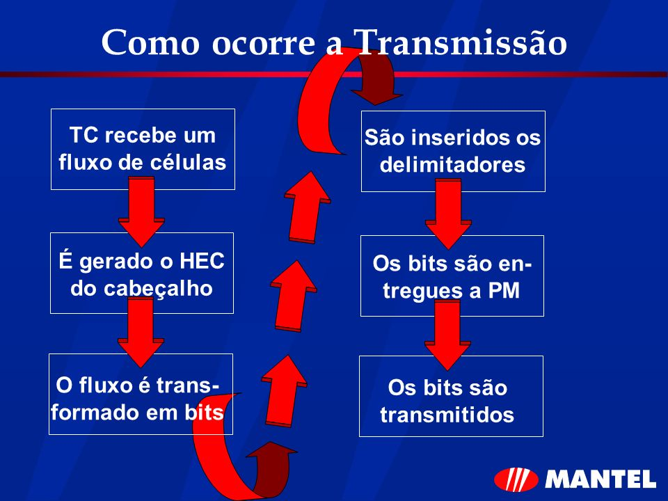 Como ocorre a Transmissão