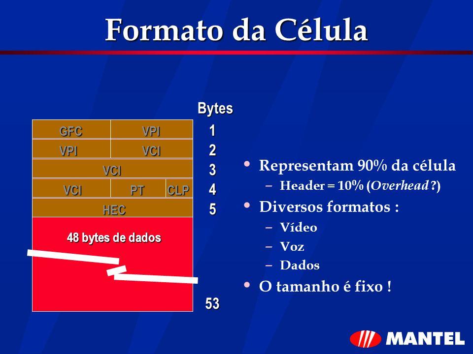 Formato da Célula Bytes 1 2 Representam 90% da célula 3