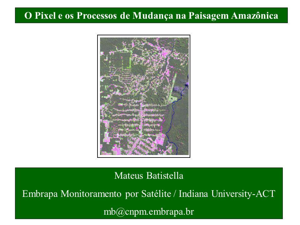 O Pixel e os Processos de Mudança na Paisagem Amazônica