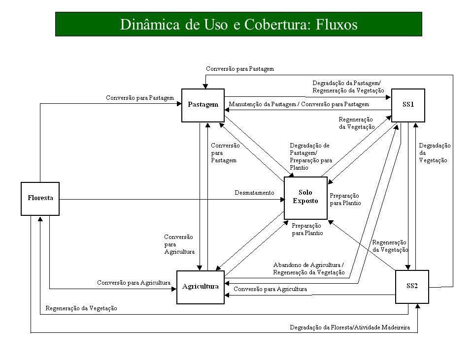 Dinâmica de Uso e Cobertura: Fluxos