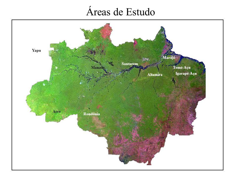 Áreas de Estudo Santarém Rondônia Altamira Marajó Tomé-Açu Igarapé-Açu