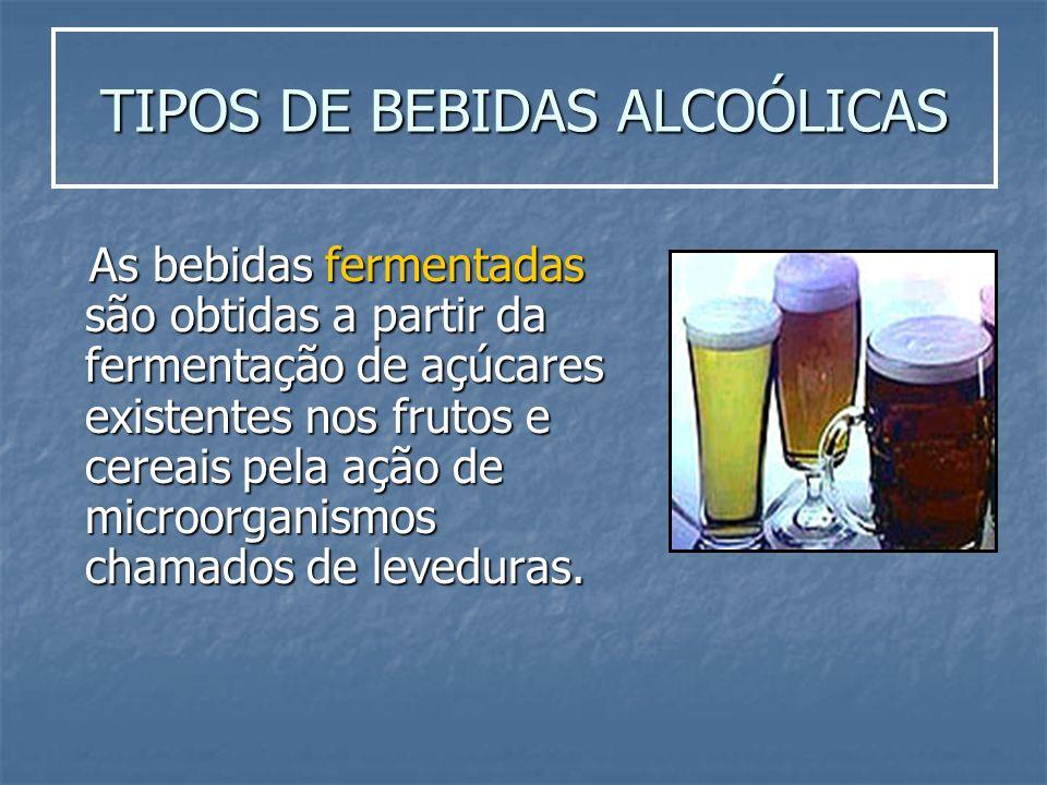 TIPOS DE BEBIDAS ALCOÓLICAS