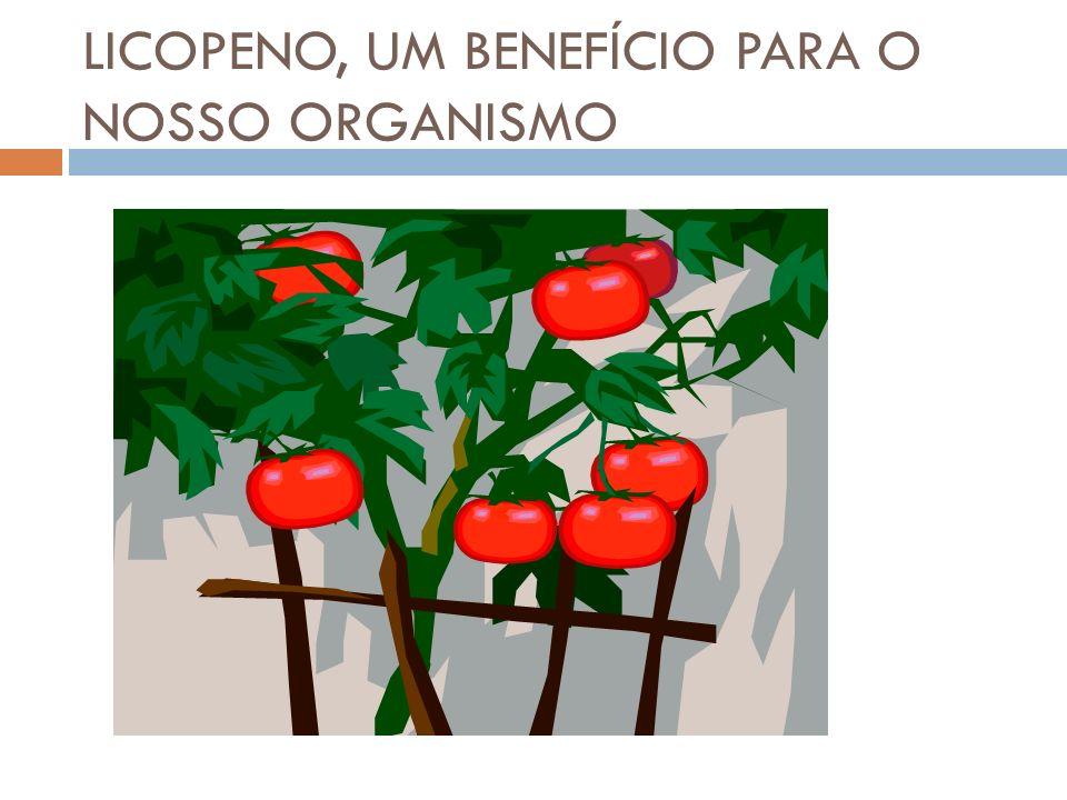 LICOPENO, UM BENEFÍCIO PARA O NOSSO ORGANISMO
