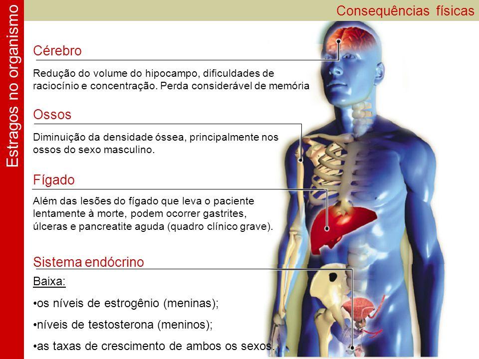Estragos no organismo Consequências físicas Cérebro Ossos Fígado