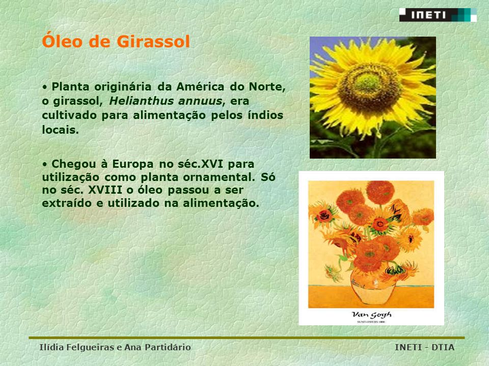 Óleo de Girassol Planta originária da América do Norte, o girassol, Helianthus annuus, era cultivado para alimentação pelos índios locais.