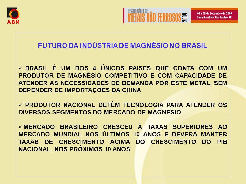 FUTURO DA INDÚSTRIA DE MAGNÉSIO NO BRASIL