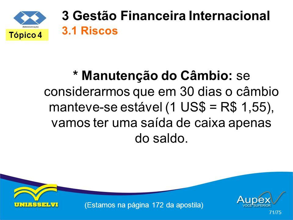 3 Gestão Financeira Internacional 3.1 Riscos