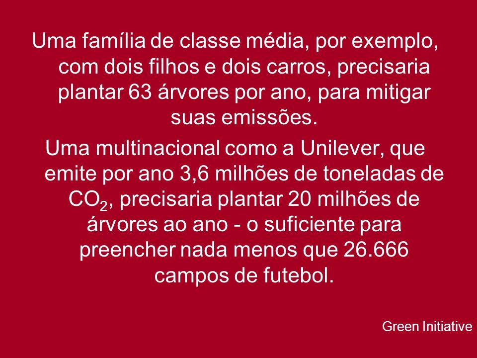 Uma família de classe média, por exemplo, com dois filhos e dois carros, precisaria plantar 63 árvores por ano, para mitigar suas emissões.
