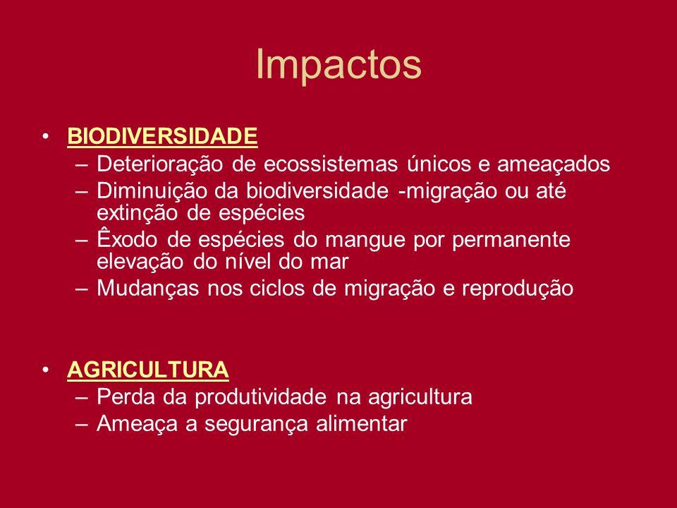 Impactos BIODIVERSIDADE