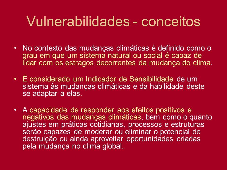 Vulnerabilidades - conceitos