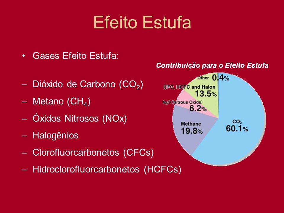 Efeito Estufa Gases Efeito Estufa: Dióxido de Carbono (CO2)