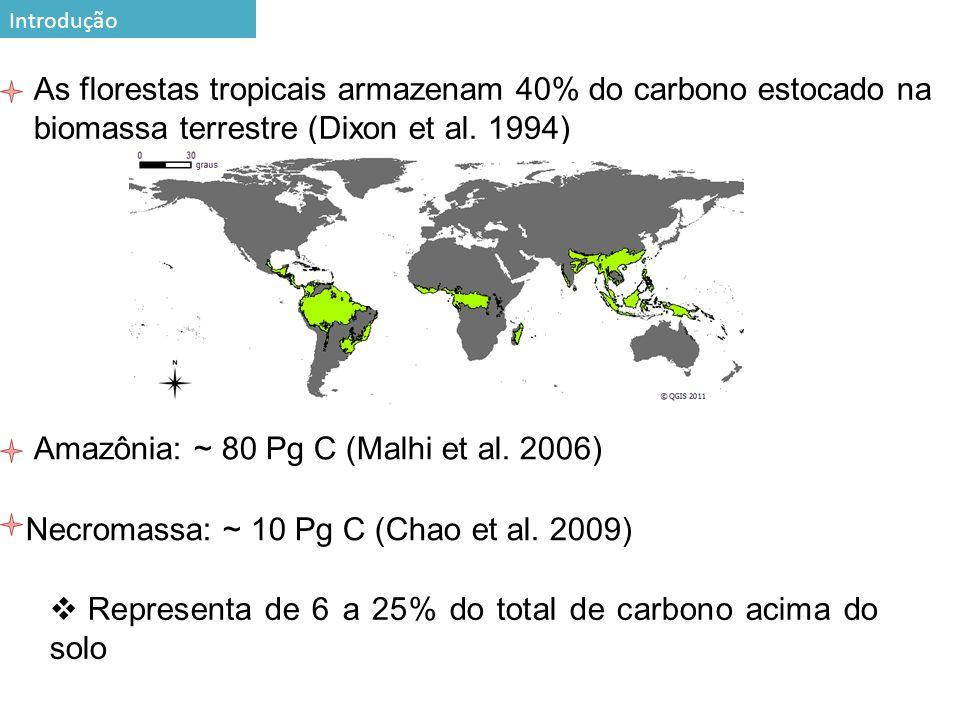 Amazônia: ~ 80 Pg C (Malhi et al. 2006)