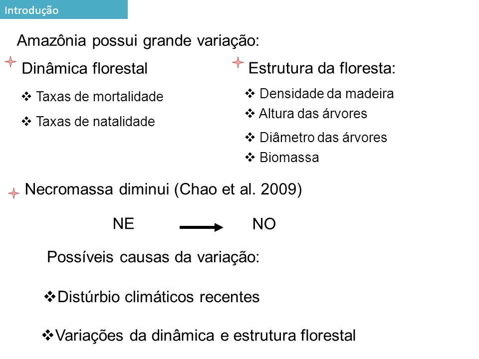 Amazônia possui grande variação: