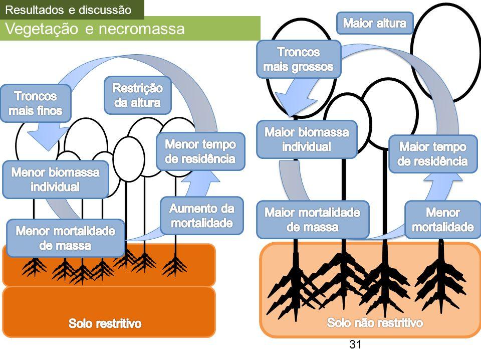 Vegetação e necromassa