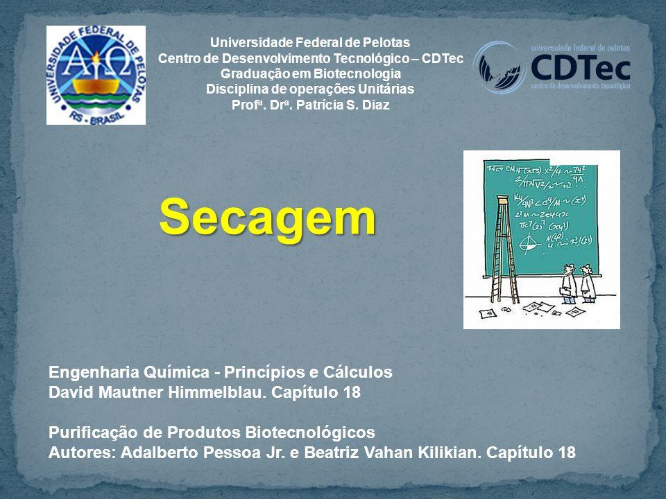 Secagem Engenharia Química - Princípios e Cálculos