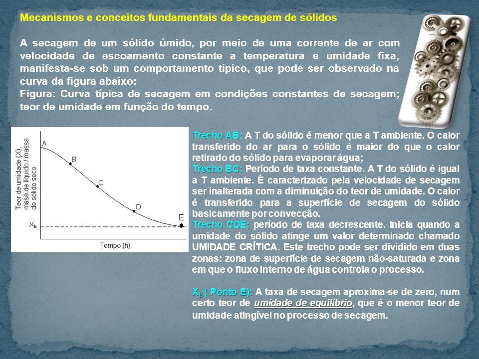 Mecanismos e conceitos fundamentais da secagem de sólidos