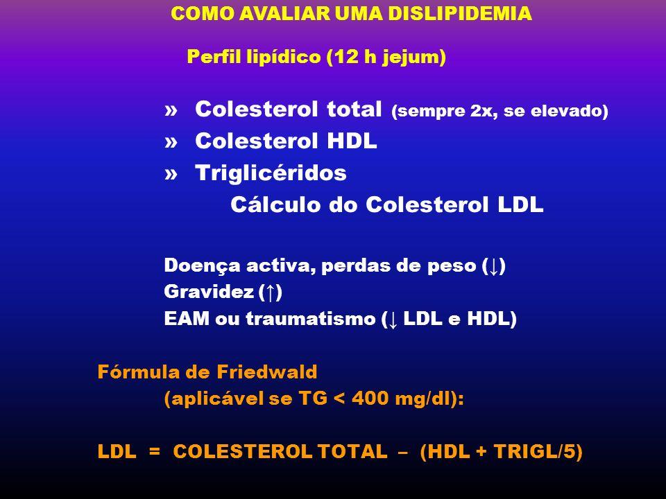 Perfil lipídico (12 h jejum)