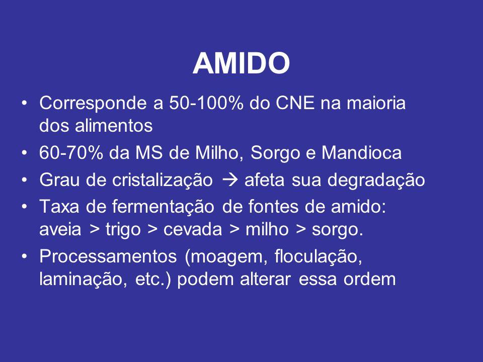 AMIDO Corresponde a 50-100% do CNE na maioria dos alimentos