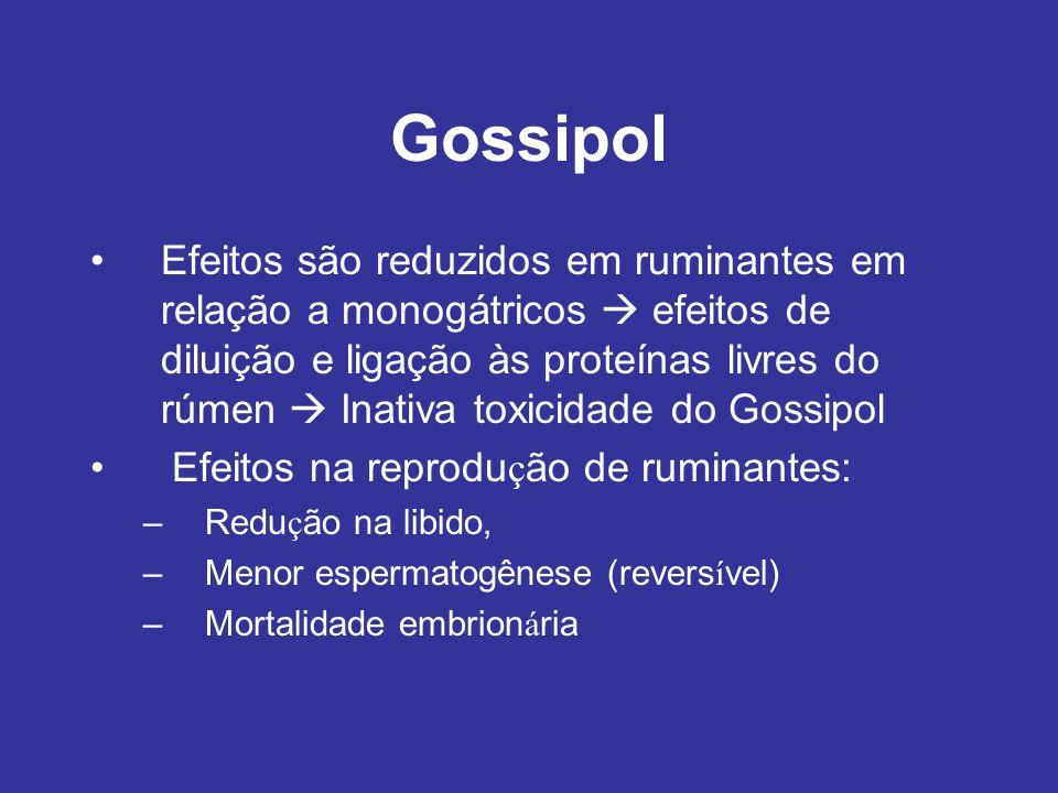 Gossipol