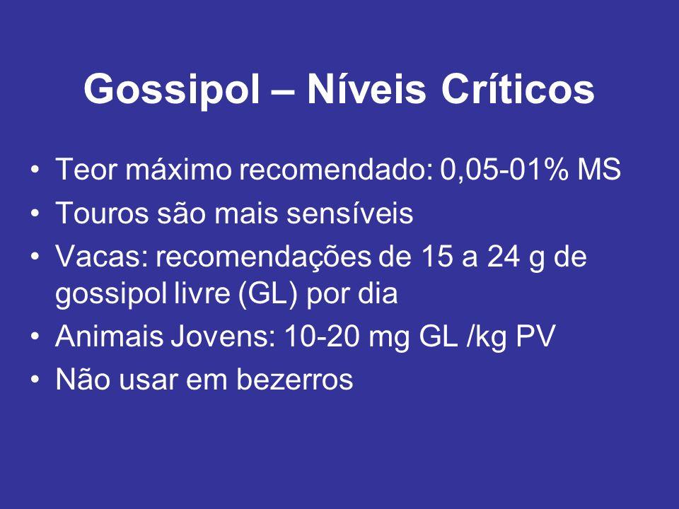 Gossipol – Níveis Críticos