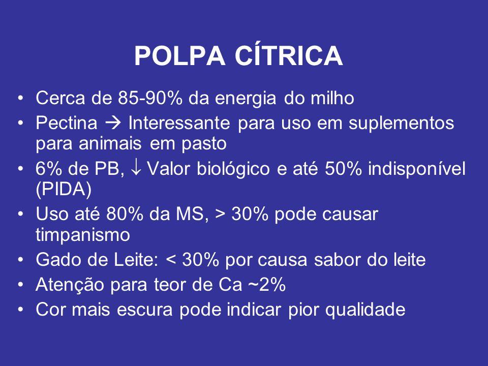 POLPA CÍTRICA Cerca de 85-90% da energia do milho
