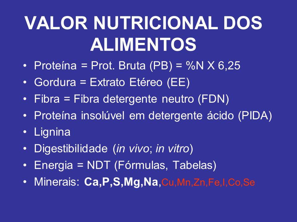 VALOR NUTRICIONAL DOS ALIMENTOS
