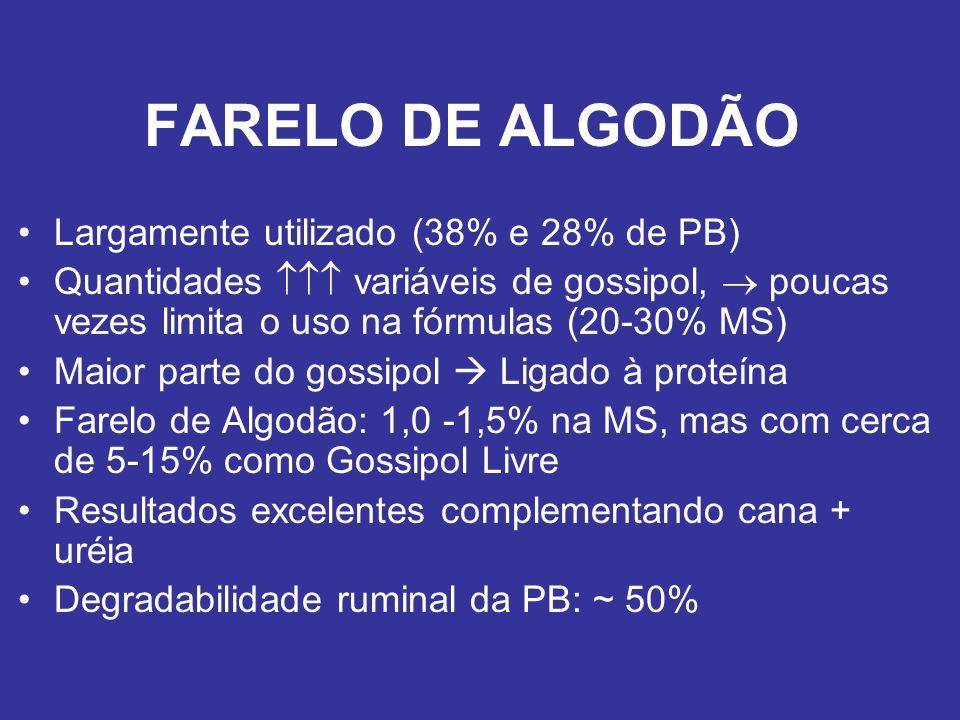 FARELO DE ALGODÃO Largamente utilizado (38% e 28% de PB)