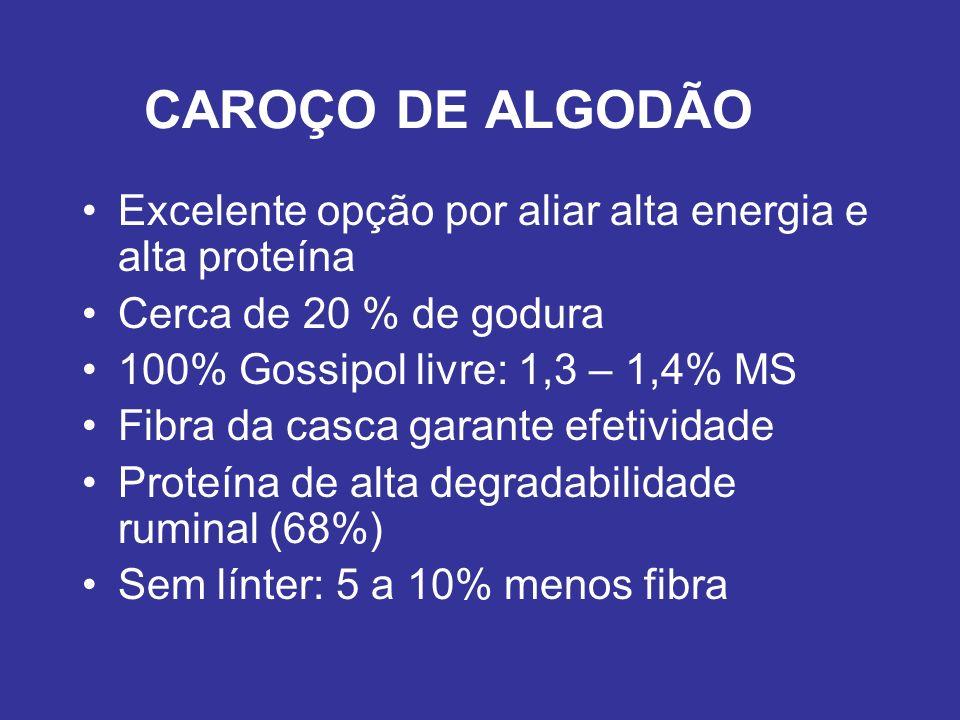 CAROÇO DE ALGODÃO Excelente opção por aliar alta energia e alta proteína. Cerca de 20 % de godura.