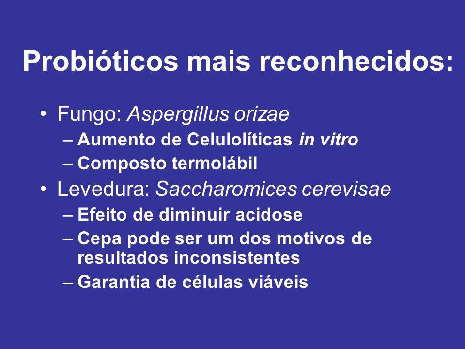 Probióticos mais reconhecidos:
