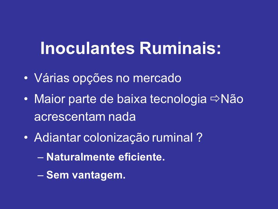 Inoculantes Ruminais: