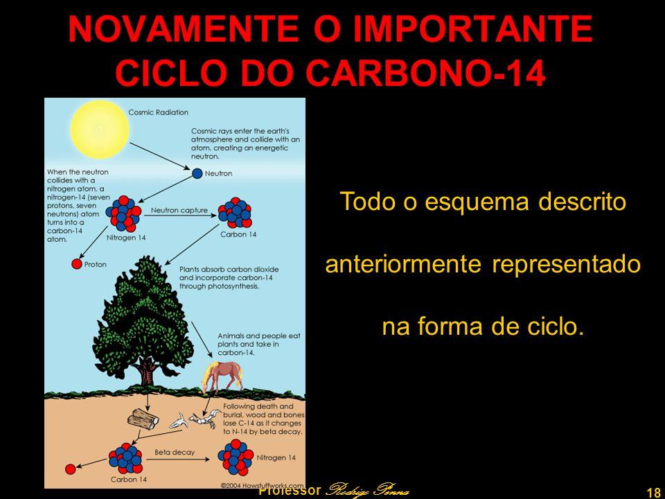 NOVAMENTE O IMPORTANTE CICLO DO CARBONO-14