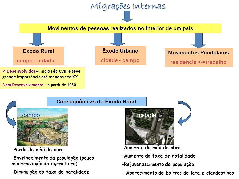 Migrações Internas campo cidade