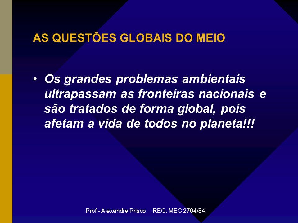 AS QUESTÕES GLOBAIS DO MEIO