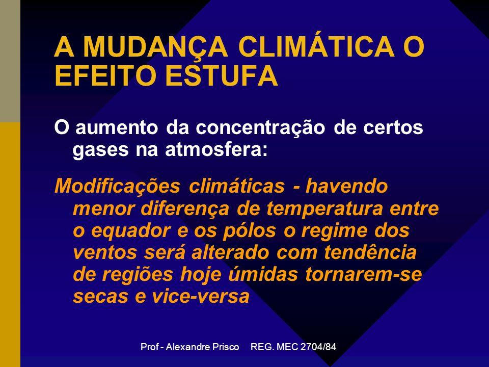 A MUDANÇA CLIMÁTICA O EFEITO ESTUFA