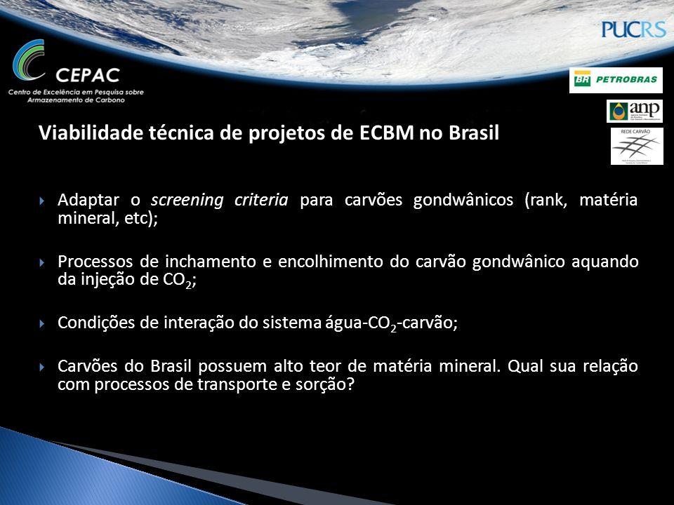 Viabilidade técnica de projetos de ECBM no Brasil