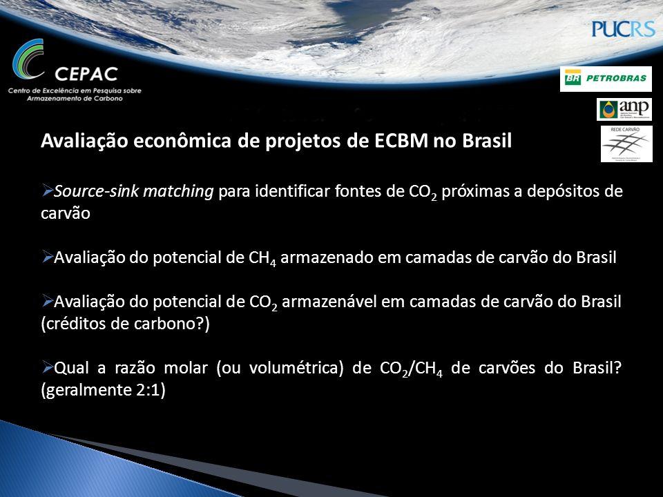 Avaliação econômica de projetos de ECBM no Brasil