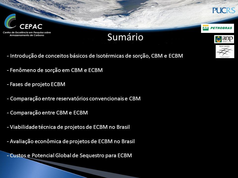 Sumário - Introdução de conceitos básicos de Isotérmicas de sorção, CBM e ECBM. Fenômeno de sorção em CBM e ECBM.