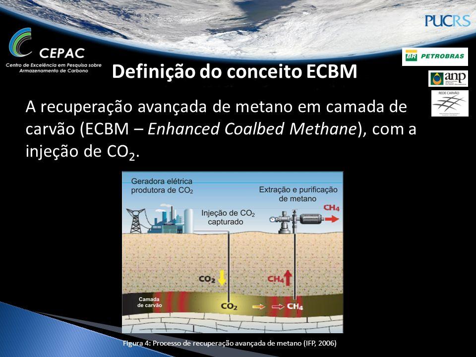 Definição do conceito ECBM