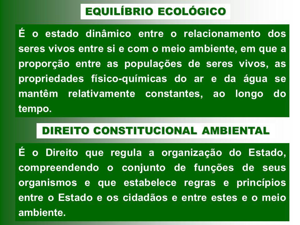 DIREITO CONSTITUCIONAL AMBIENTAL