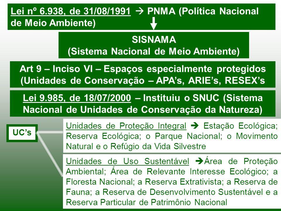 (Sistema Nacional de Meio Ambiente)