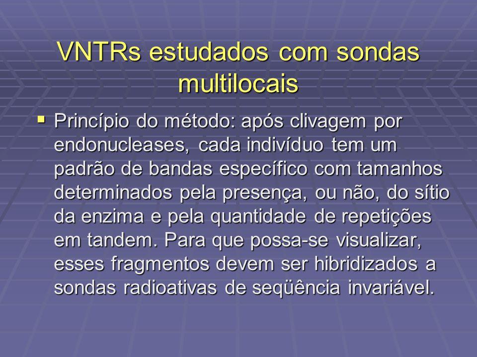 VNTRs estudados com sondas multilocais