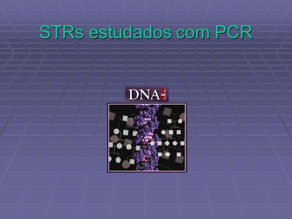 STRs estudados com PCR