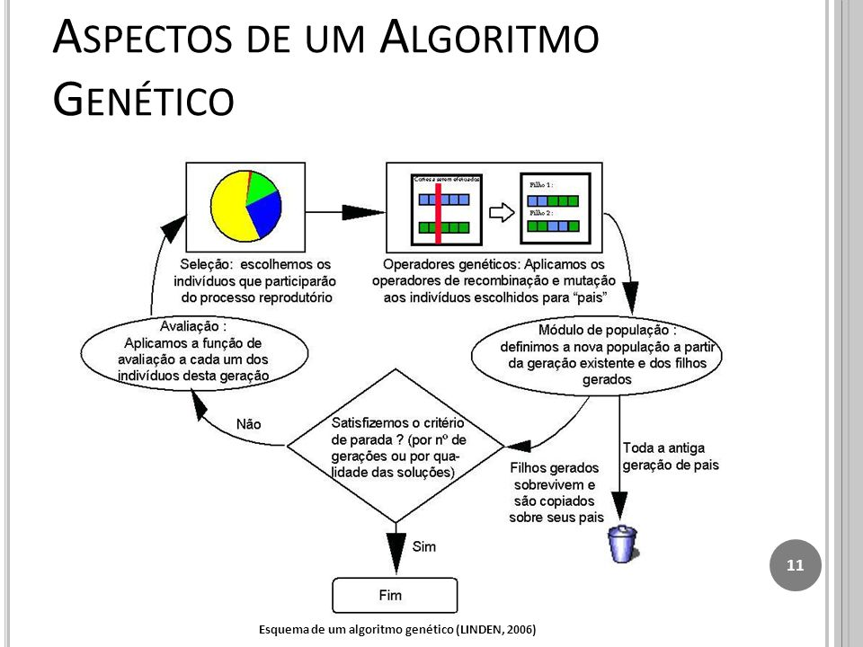 Aspectos de um Algoritmo Genético