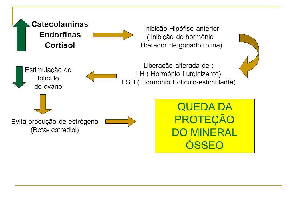 QUEDA DA PROTEÇÃO DO MINERAL ÓSSEO Catecolaminas Endorfinas Cortisol